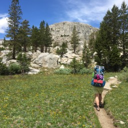 Day 91: Tuolumne Meadows