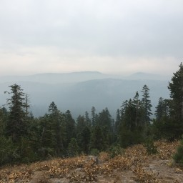 Day 153-154: Donner Summit to Sierra City